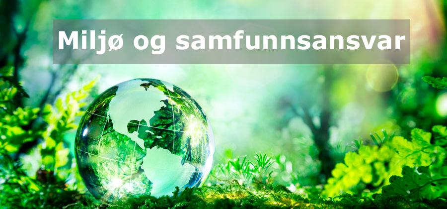 Miljøbilde_leko-foto